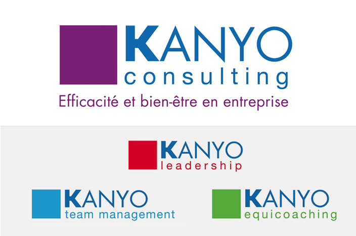 creation-graphique-logo-consulting-2